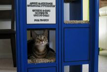 Dr who -cats