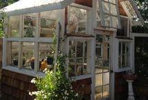 greenhouses