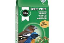 Feed For Parakeets
