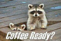 Java Shop / Coffee Quips