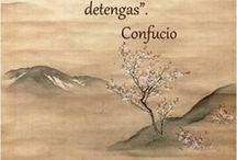 Frases De Buda En Español