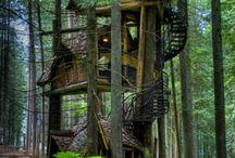 Tree Houses / Tree Houses, Forts, Backyard House,