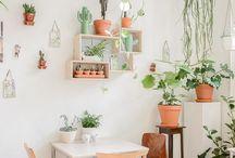 Deco con plantas