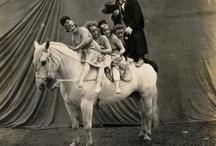 sirkus & huvipuisto