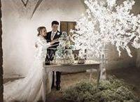 Il mio matrimonio da sogno