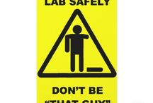 Labs / by Margaret Werry