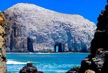 CHILE - CENTRO / SUR