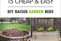 Gardening / Planting a garden and garden ideas.