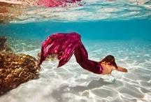 mermaids / by Alice Tinney
