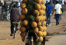 Things on a boda