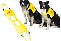 Pet Supplies Products