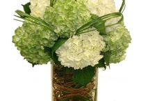Green Flowers / Green flowers, green floral arrangements from Trias Flowers & Gifts in Miami.