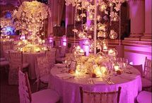 Reception Decor and Accessories / by Perfect Petals Design Grp