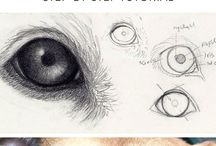 Drawing dogs eyes