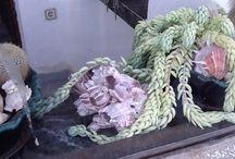 Комнатные Растения / Цветы в горшках и все для ухода