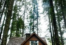 little cabin in the woods / magical mystical hideaways