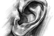 Ears / Drawing ears, painting ears, the better to hear you with, my dear...