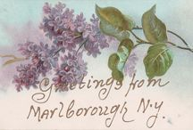 Local History Postcards / Old postcards of Marlboro, NY
