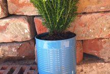 Replant / Növények gyökeresen másképp