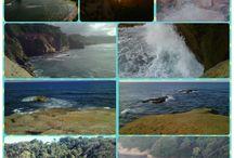 Natural Beauty - Calibishie / Calibishie,  Saint Andrews Dominica
