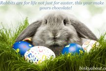 Rabbits are for life not just for easter