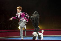 Ringling Bros XTREME Circus / by Eva Smith at Tech Life Magazine