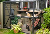 The Catio / Catios are outdoor places were your pets can safely enjoy nature.  Yes, like patios for cats.