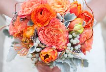 Peach :: Orange :: Coral / The perfect complement any season