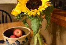 Sunflowers / by Kath