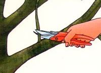 Bäume, Garten, Sträucher