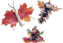 Fall Crafts / by Jessica Guenther