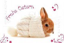 Bilder Ostern