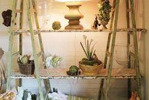 Displays & Shop-window
