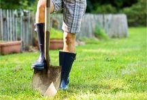 tutorials for gardening / by Alexa Dorot