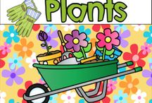 Plants / Crafts and activities about plants.