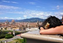 Bella Florence / A collection of all the things I love about the city I call home in Italy- Florence! Firenze:)