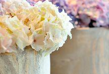 floristik in deutschland / Flower shops in Germany | Bloemenwinkels in Duitsland | Blumenladen in Deutschland | Boutiques des Fleurs en Allemagne