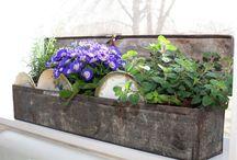 Outdoor Deco/Gardening / by Donna Ferguson