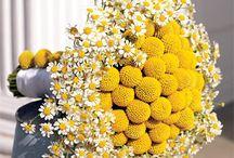 Yellow  Summer Board / by Adel Duna