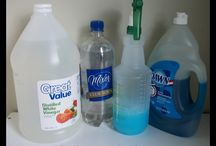 Car Cleaning Solutions