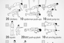 Muscle, Workout