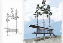 Casas de árvore