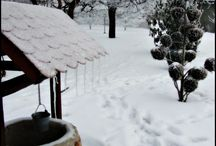 garden - winter / Feel the magic of winter