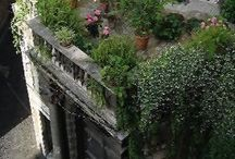 Gardens on the Roof