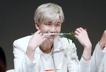 `Kim NamJoon`