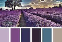 Farge kombinasjoner