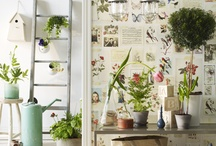 Shepherds hut / green and pink // cabbages and roses // country garden chic