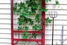If I had a garden