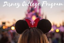 Disney College Program / Have you've been accepted to stay at the most magical place on earth? Are you looking for all the information you can receive for your internship? Well look no further, all you have wished for is here. This board is dedicated to tips, tricks, and ideas about the Disney College Program and Disney (for when you're hanging out in the parks). If you're like me, you've been looking high and low for boards to guide you and I believe this one can help you too!