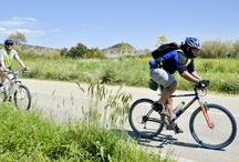 Mountain Bike - Nature & Sports - Sardinia / The amazing nature and landscapes of Sardinia with the  active biking experience